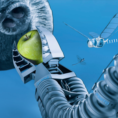 Animal Like Automation From Festo