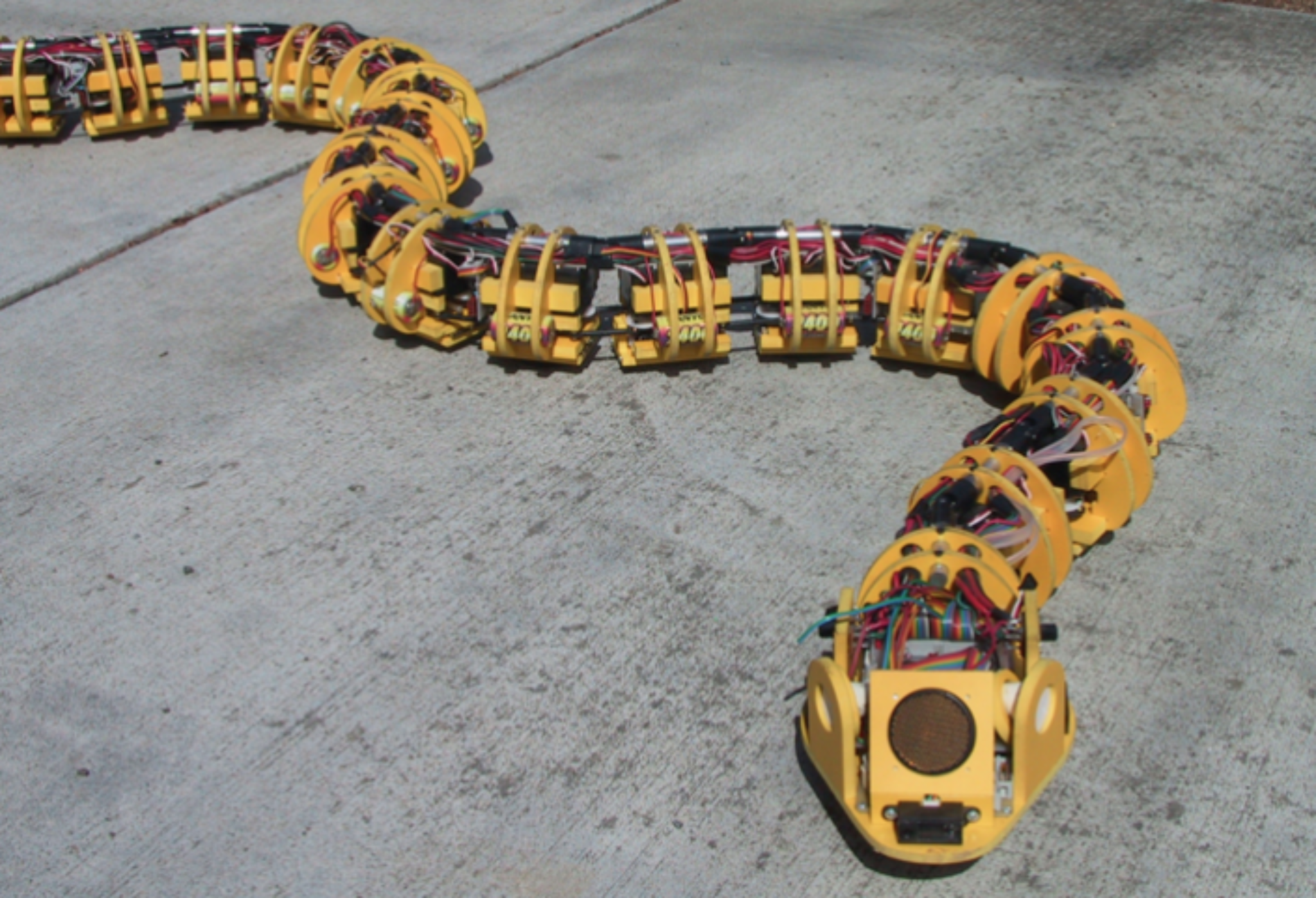 The Robots That Mimic Animals