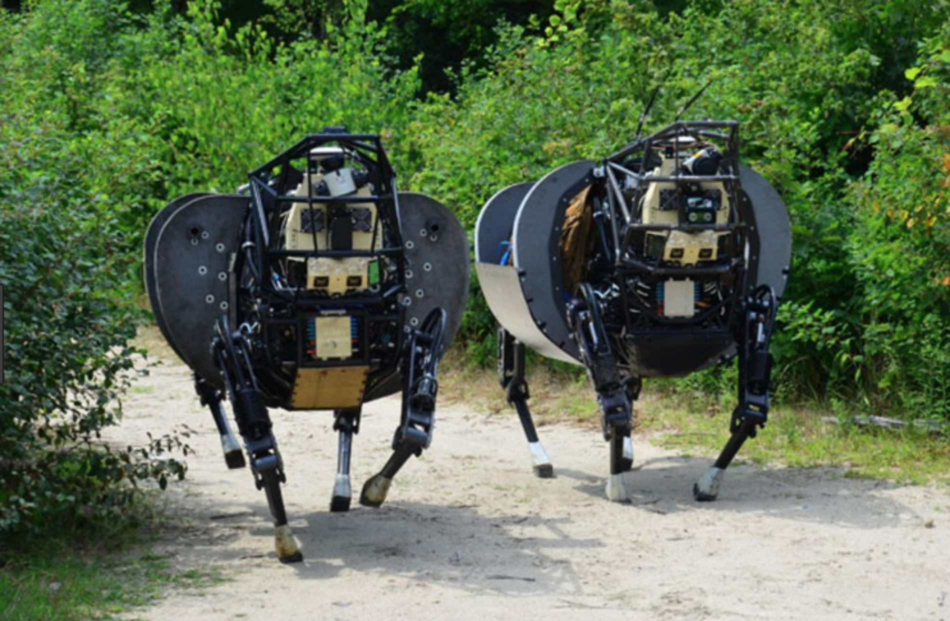 Meet The Boston Dynamics Family Of Robots