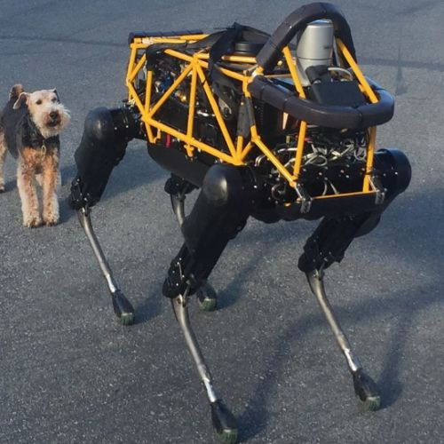 Amazing Robots Inspired By Animals